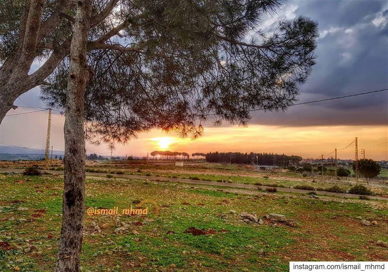 ~~☆☆ 📸1812161617 ☆☆~~ (Zawtar Ash Sharqiyah, Al Janub, Lebanon)