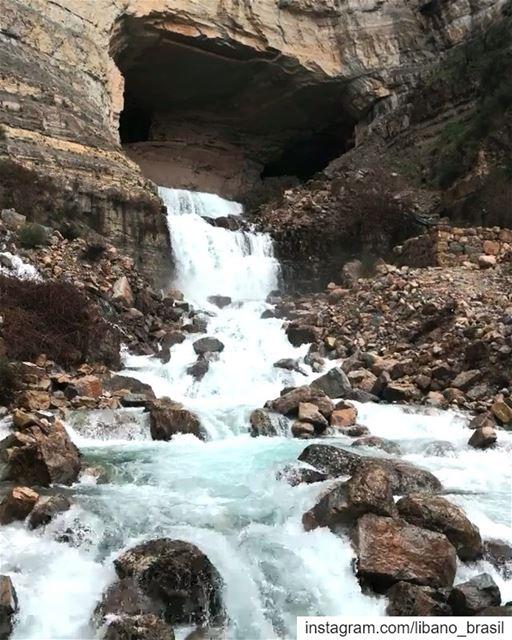 🇱🇧🇧🇷 Jorrando de uma caverna de calcário na parede do penhasco, as... (Afka, Mont-Liban, Lebanon)