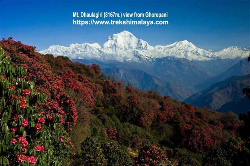 Trekking in Nepal - 2