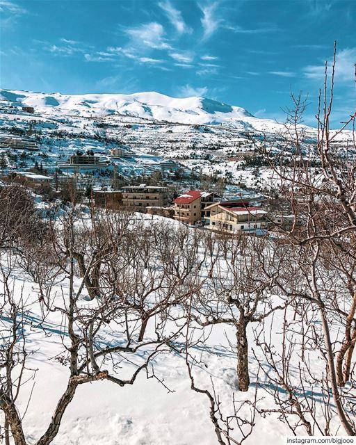 Rise and shine! shotoniphone ..... natgeoshot natgeotravelpic ... (Lebanon)