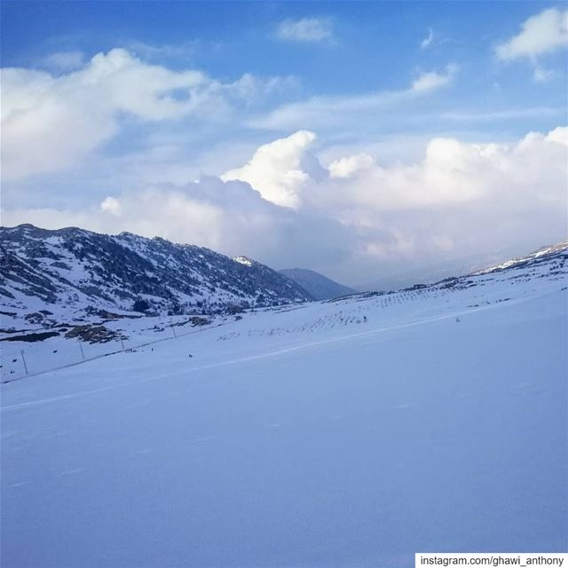 """Kindness is like snow. It beautifies everything it covers"" (Kahlil Gibran) (El Laklouk, Mont-Liban, Lebanon)"