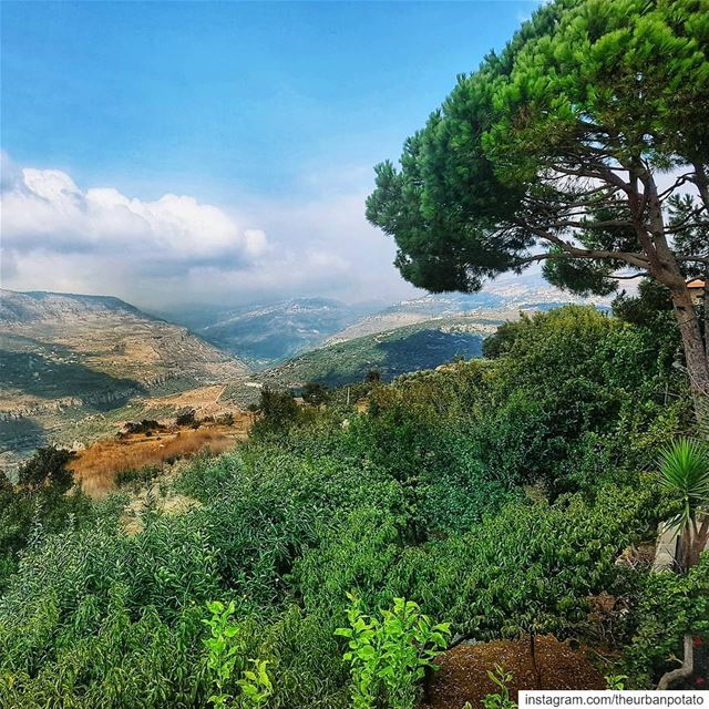 Nature is a part of us... So if you feel you lost connection to nature,... (جزين - Jezzine)