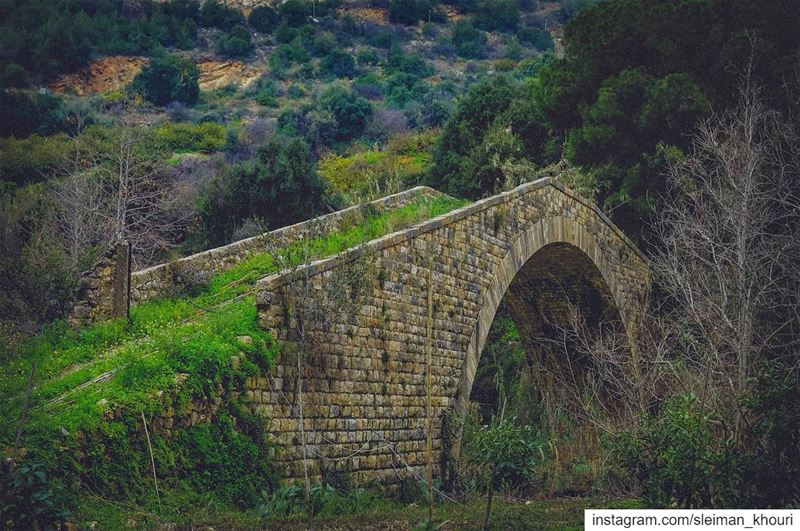 The hardest thing in life is to know which bridge to cross and which to... (Lebanon)