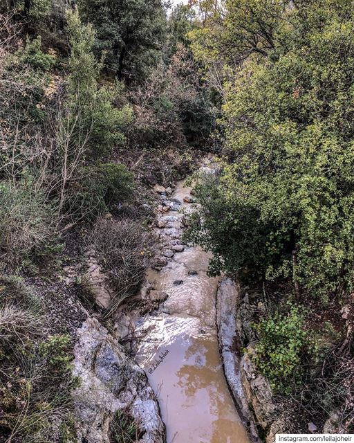 Call it magic... motherearth Gaia livelovechouf hiking hike myescape ...