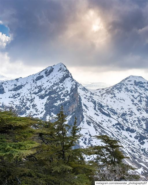 Hike more. Worry Less 🏔️⛰️ - The beautiful snow capped mountains of... (Arz Tannoûrîne)