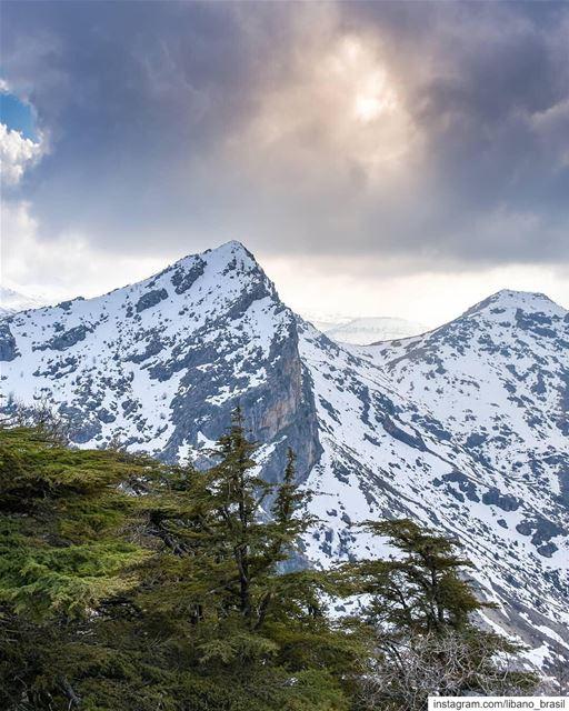 🇱🇧🇧🇷 Alpes libaneses pelas lentes do @alexander_photography97. ⠀⠀⠀⠀⠀⠀⠀⠀ (Arz Tannoûrîne)