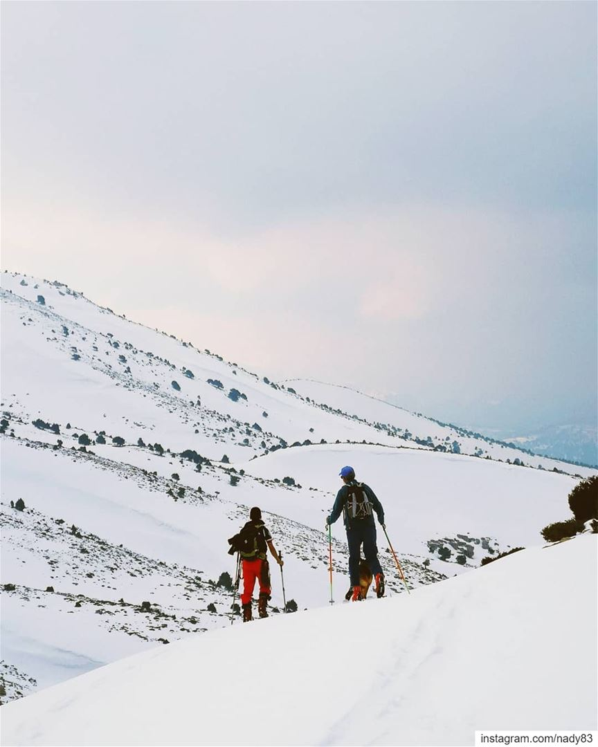 Skitouring the North of Lebanon 🇱🇧.... backcountryskiing... (North Governorate)