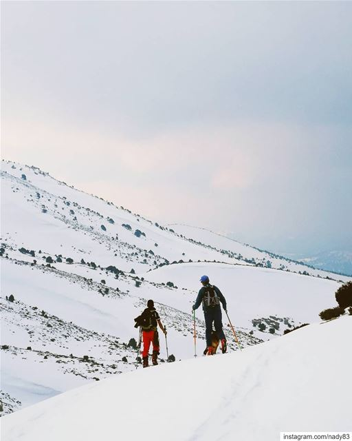 Skitouring the North of Lebanon 🇱🇧.... backcountryskiing... (North Governorate)