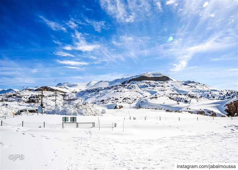 Hello White March !@jp.boutros JabalMoussa unescomab unesco ... (Jabal Moussa Biosphere Reserve)