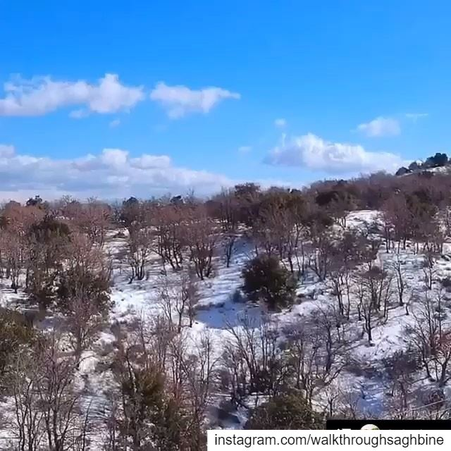 Repost @join.joe Another temporary post sky likeforlikes beirut ... (Saghbîne, Béqaa, Lebanon)