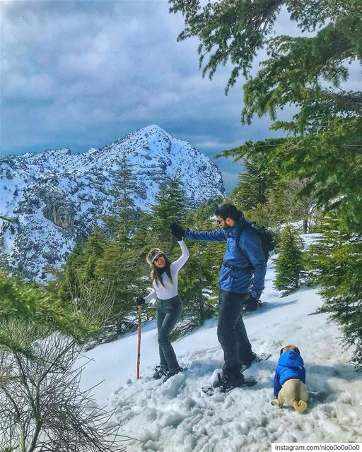 Amazing snowshoeing event this weekend☃️❄️ (read full info below)..📆📍S (Cedar Reserve Tannourine)