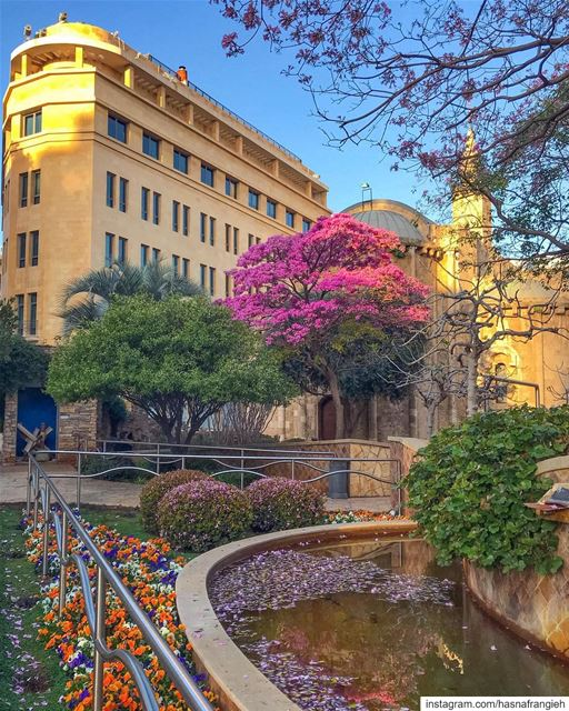 Beirut where hope always blossoms 🌸💙... (Beirut, Lebanon)