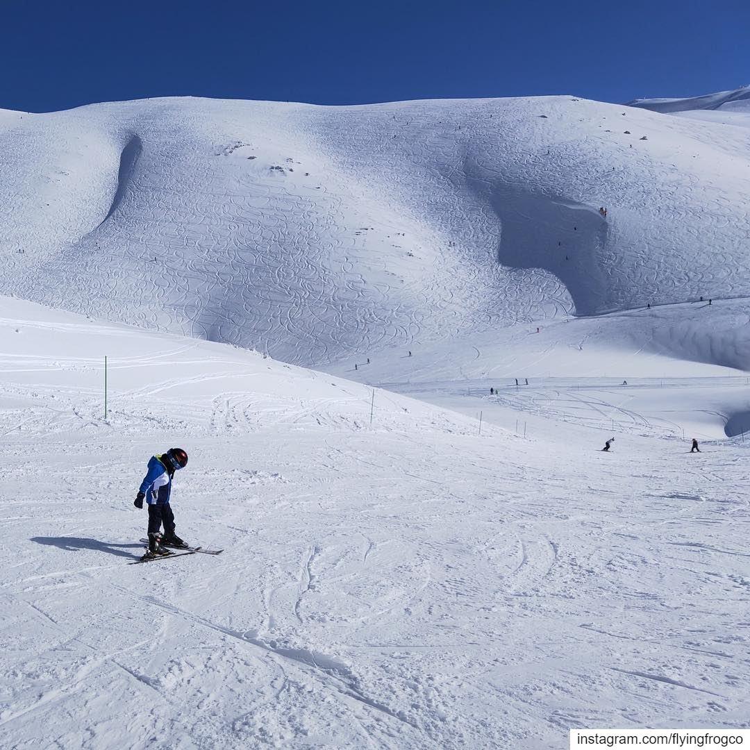 He got what it takes to be an awesome skier!!..... flyingfrog ... (Mzaar Ski Resort Kfardebian)