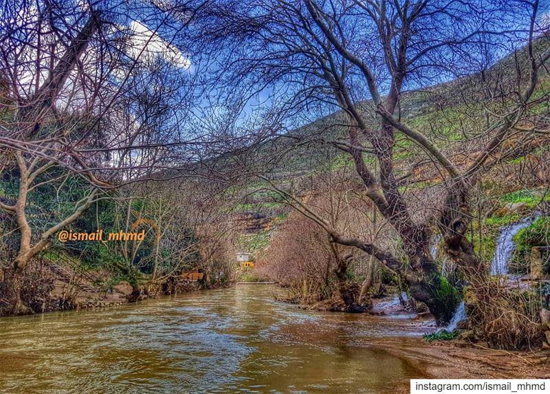 ~~☆☆ 📸1902011218 ☆☆~~ (Zawtar Ash Sharqiyah, Al Janub, Lebanon)