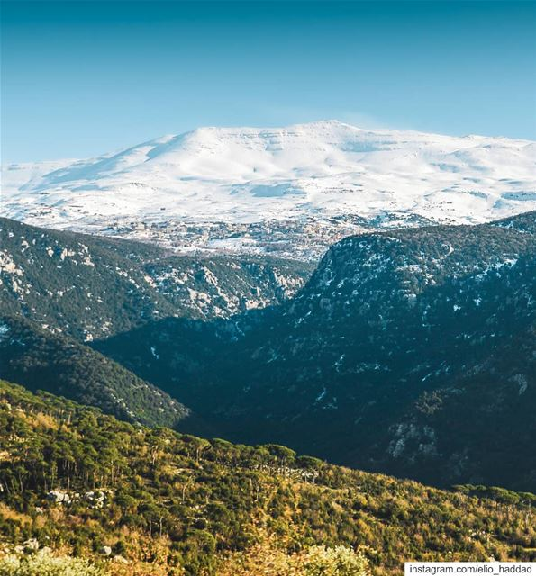 Good Morning  Lebanon 🇱🇧  Winter  Snow  Snowing  Mountains  Mountain ... (Aïn Zhalta, Mont-Liban, Lebanon)
