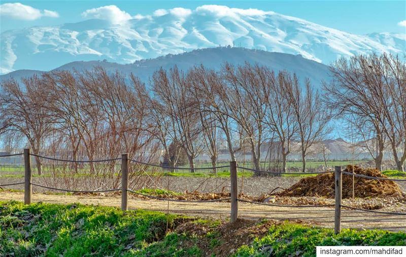 Lebanon Bekaa pysglb Taanayel lake mountains landscape nature photography... (Deïr Taanâyel, Béqaa, Lebanon)