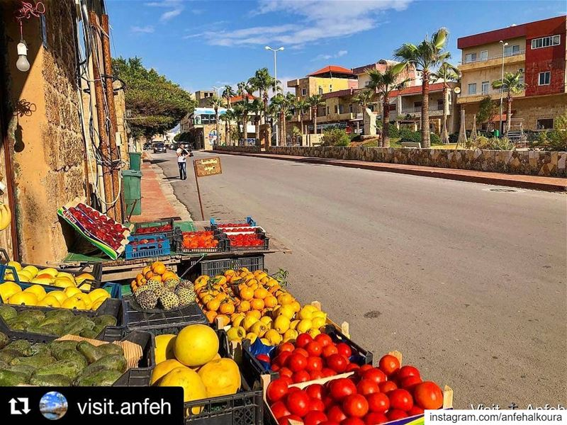 Repost @visit.anfeh・・・Fruits anyone? 🥑🍋 ————————————————————————... (Lebanon)
