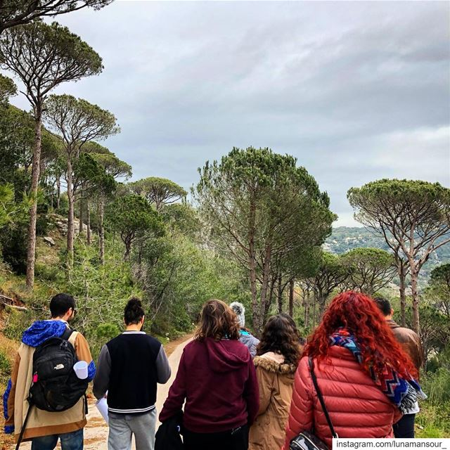 pines &... (Ra'S Al Matn, Mont-Liban, Lebanon)