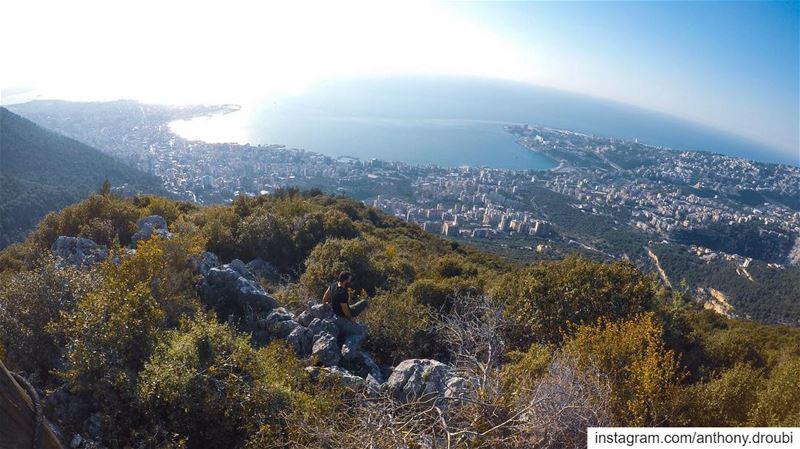 🌳 (Dlebta, Mont-Liban, Lebanon)