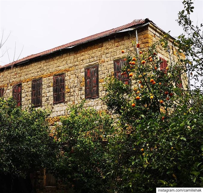 lebanon mountlebanon keserwan dlebta livelovedlebta lebanonhouses old... (Dlebta, Mont-Liban, Lebanon)