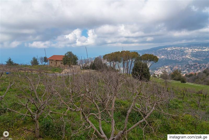 Clouds and a lonely house at the end of trees range trees treeworld ... (Mount Lebanon Governorate)