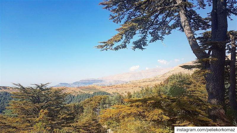 landscape landscapephotography landscape_lovers landscapes ... (Arz Tannoûrîne)