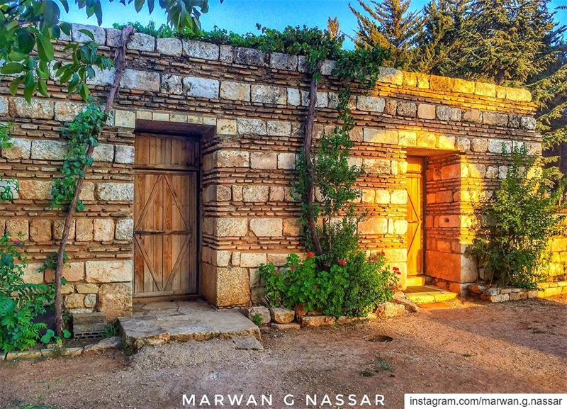 We all have souls of different ages.....📍Anjar, Bekaa, Lebanon 🇱🇧..... (`Anjar, Béqaa, Lebanon)