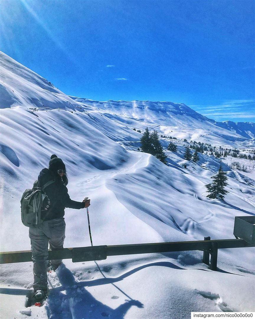 ⚠️Last snowshoeing event so don't miss it (ready full info below)..📆📍S (Cedars of God)