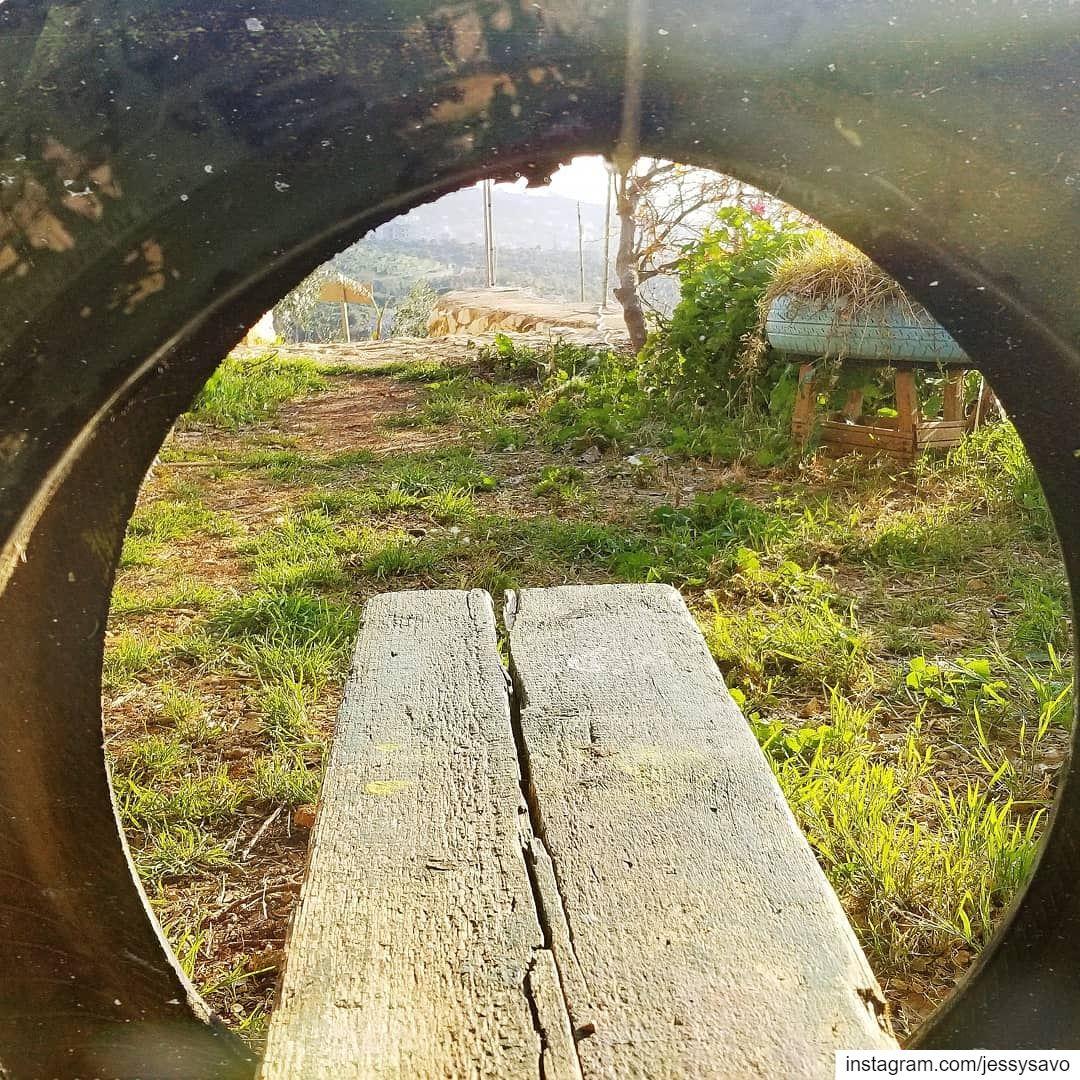 Adventure is just outside your Window! 💛...--------------------------- (TAFLA)