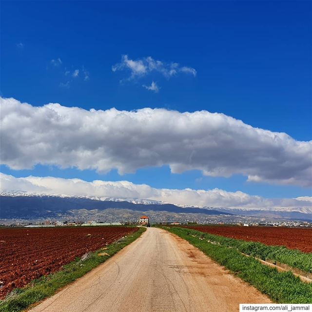 Is it spring yet?.. hellaniye  bekaa  beqaa  valley  lebanon  spring ... (Beqaa Governorate)