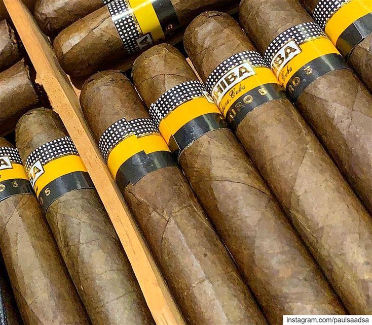 cigar smoking maduro lebanon cuba cubancigars cohiba cohibacigar ... (Beirut, Lebanon)