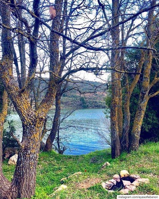 صباح الخير من صغبين Credits to @livelove.saghbine・・・ Refresh 🍃🏞 📸:@le (Saghbîne, Béqaa, Lebanon)