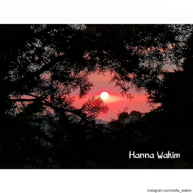 Douma ❤️❤️💕💕💕 livelovedouma douma pictures lebanonphotography @livel (Douma, Liban-Nord, Lebanon)