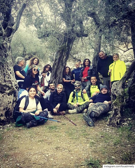 15 people in one Olive tree hikinglb hikersofinstagram hikers hiking👣... (Bchaalé, Liban-Nord, Lebanon)