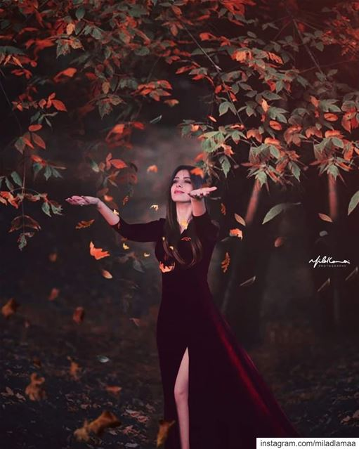 © Milad Lamaa | Hello Spring | 2019 springbreak spring springfield ... (برجا)