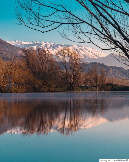 Real beauty 🏞....... landscapephotography naturephotography... (West Bekaa)
