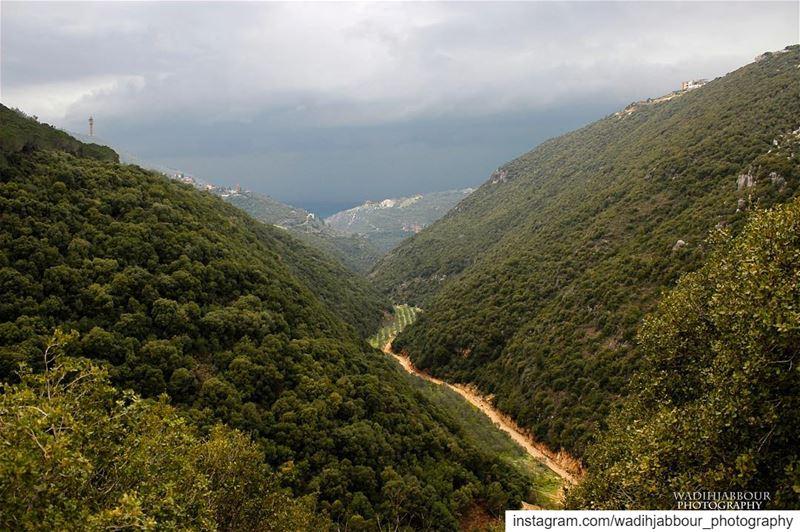 🔹🔹🔹🔹🔹 insta_lebanon igpowerclub Super_Lebanon ig_lebanon ... (Batroûn)