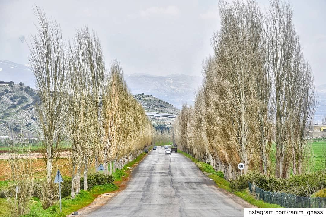 ⓛⓔⓣⓢ ⓖⓞ ⓕⓞⓡ ⓐ ⓡⓘⓓⓔ ⓣⓞ ₦ⓞⓦⓗⓔⓡⓔ !......... insta_lebanon lebstory... (`Ammiq, Béqaa, Lebanon)