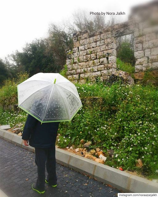 April showers bring May flowers💚💛 rain  aprilrain  trees  springflower ... (Qurnat Shahwan, Mont-Liban, Lebanon)