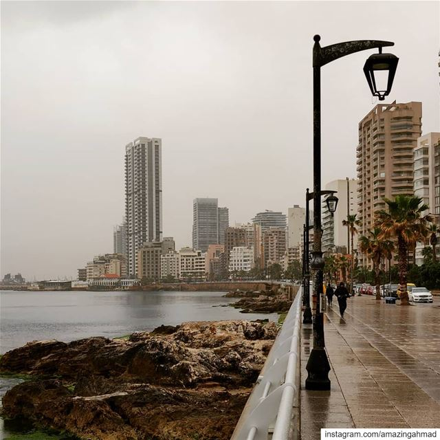 Rainy day walks with Baba 😊 (Manara Beyrouth)