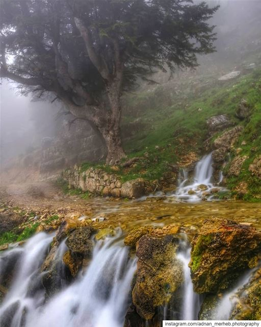Akkar❤️😍  nature  photography  naturephotography  travel  love  landscape... (`Akkar Al `Atiqah, Liban-Nord, Lebanon)