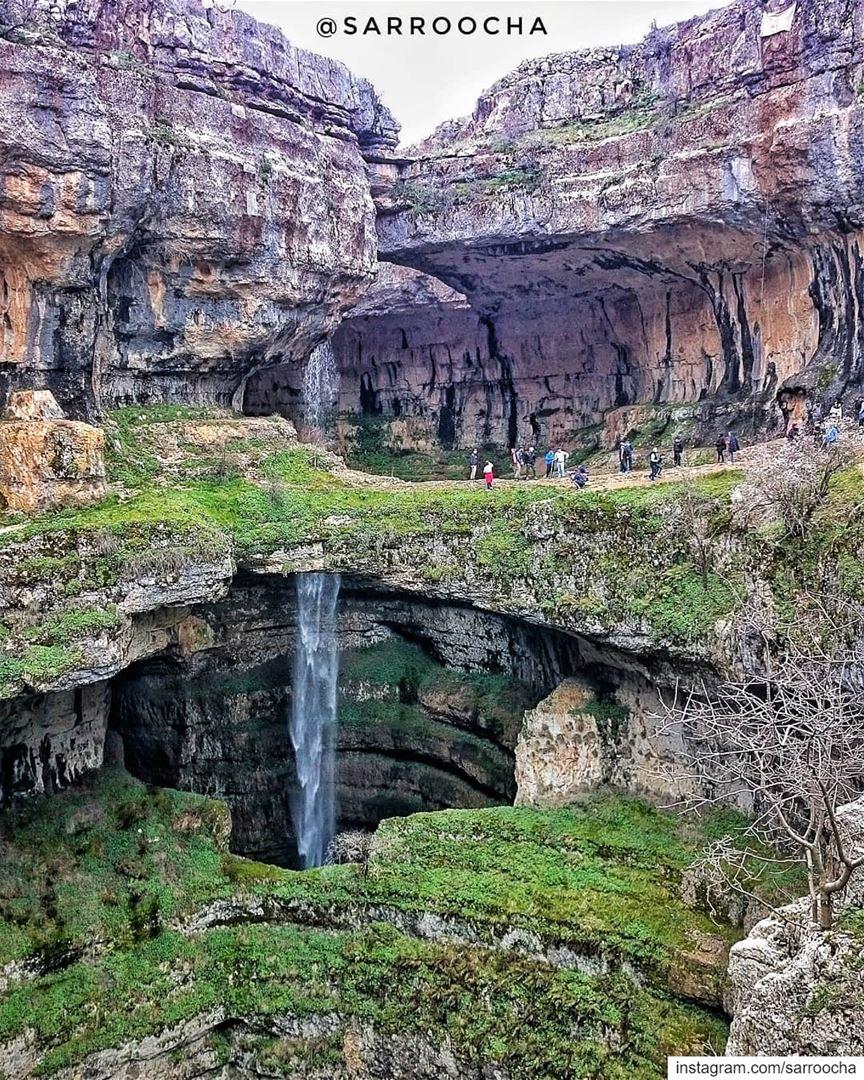 Study nature, love nature, stay close to nature🌱. takenbyme ptk_Lebanon... (Bâloûaa Balaa)