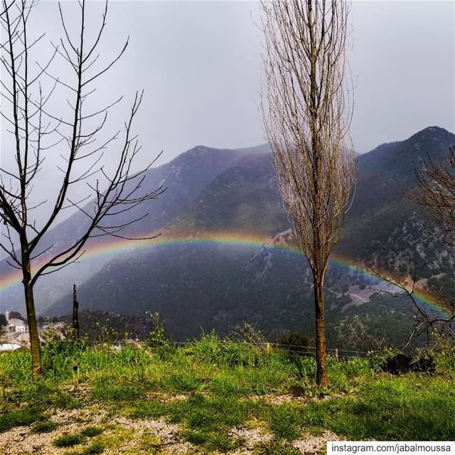 Just like the rainbow after the rain 🌈 JabalMoussa unesco unescomab ... (Jabal Moussa Biosphere Reserve)