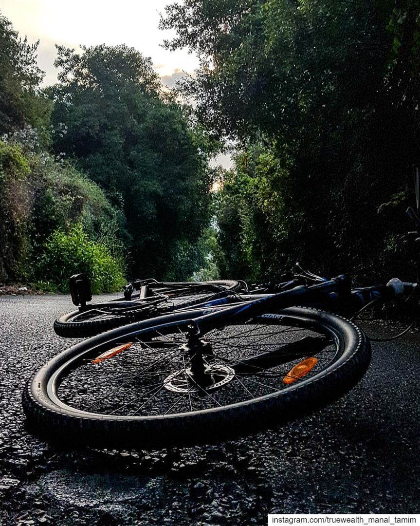 When our balance is lost..Our Life keeps moving with another 2 wheels:○Fa (Lebanon)