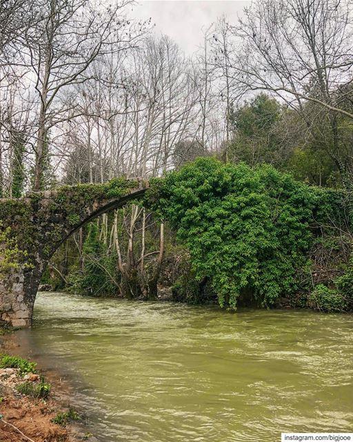 Bridge of life! shotoniphone ..... natgeoshot natgeotravelpic ... (Lebanon)