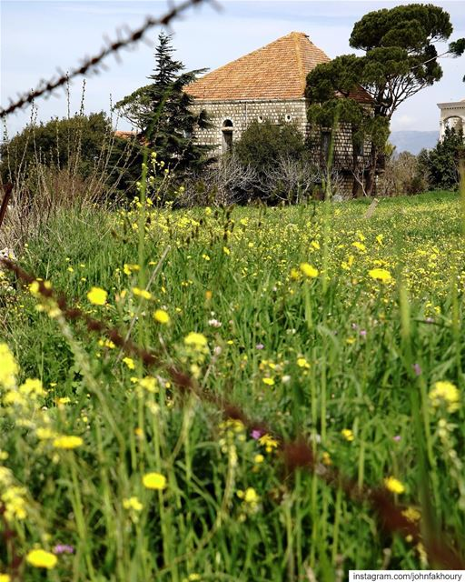 Spring feels likes... (Marjayoûn, Al Janub, Lebanon)