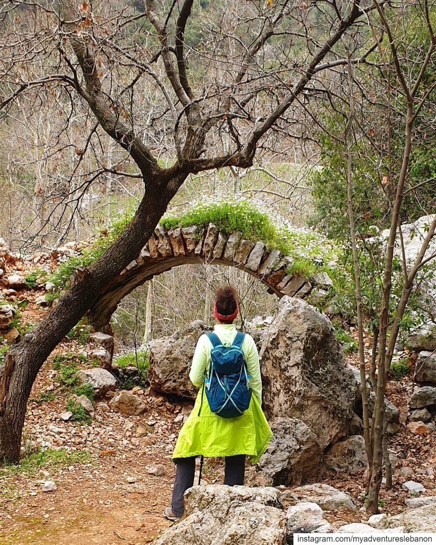 Greenery 💚🌎🏞 myadventureslebanon mountaineering choosemountains ... (Lebanon)