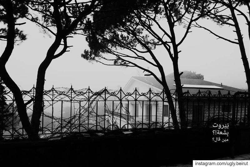 🇱🇧 Abadiyeh - Lebanon( Black and White series). .... uglybeirut بير (Abadyé, Mont-Liban, Lebanon)