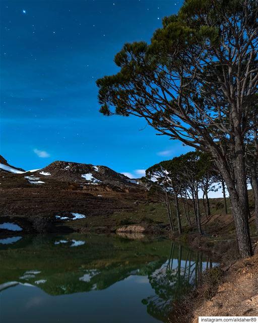 Starry night 🏞🌠....... landscapephotography naturephotography... (Falougha, Mont-Liban, Lebanon)