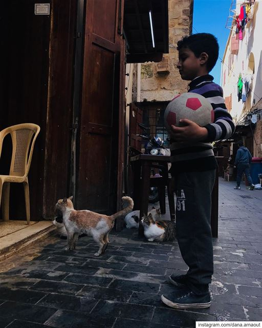 Standing in line has never looked better! 🐱👦🏻.. streetphotography ... (Sidon, Lebanon)